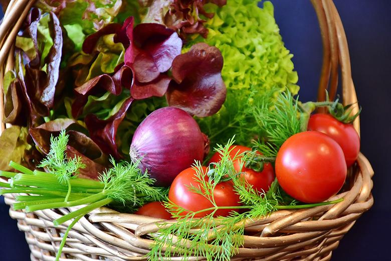 Frische Lebensmittel mit guter Qualität bekommst du am besten im Hofladen oder in Bioläden.